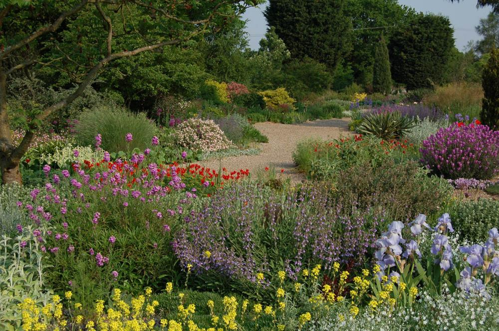 Get into Gardening 2020 - Free Garden Entry, Talks and Tours