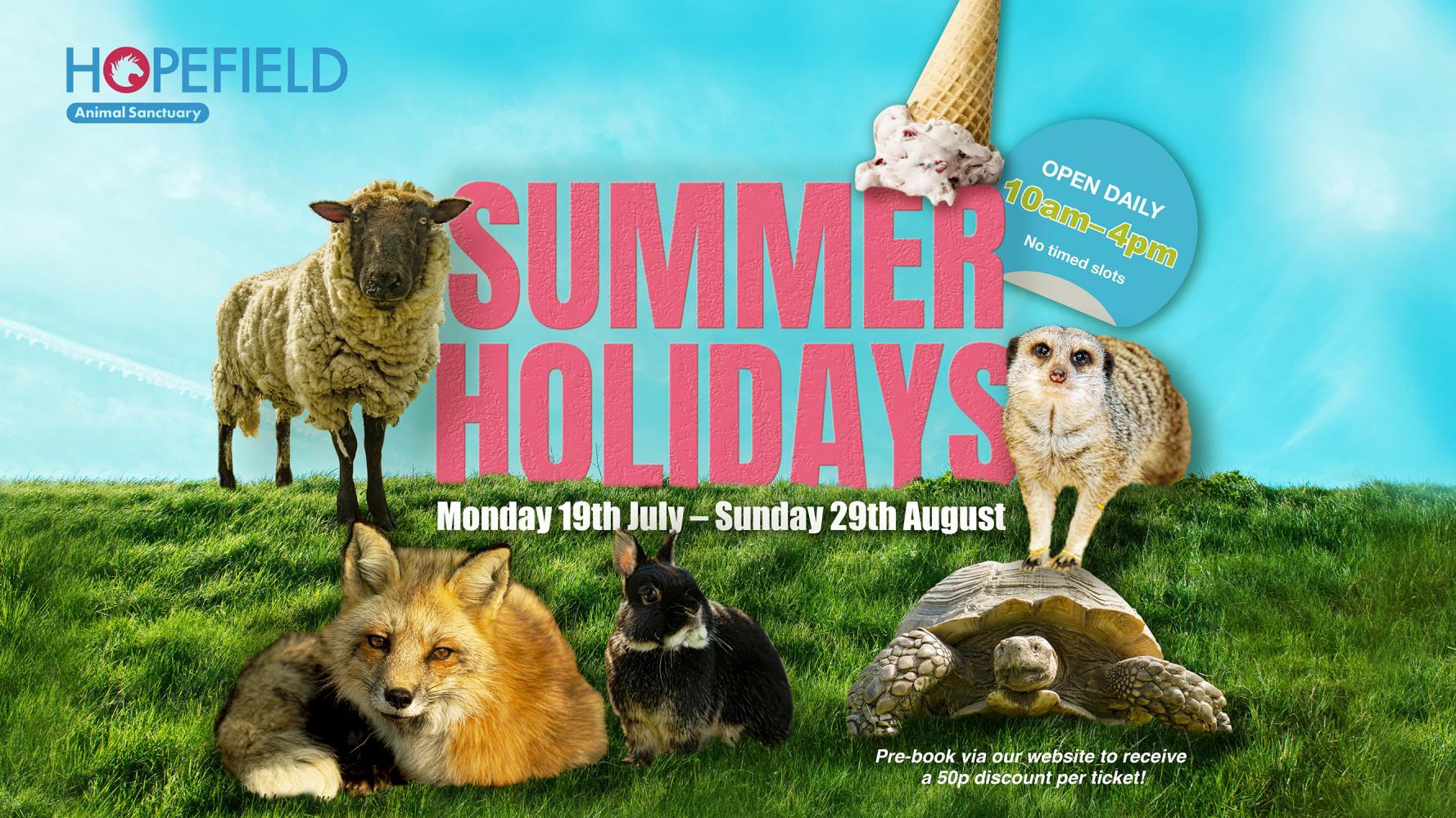 Summer Holidays at Hopefield