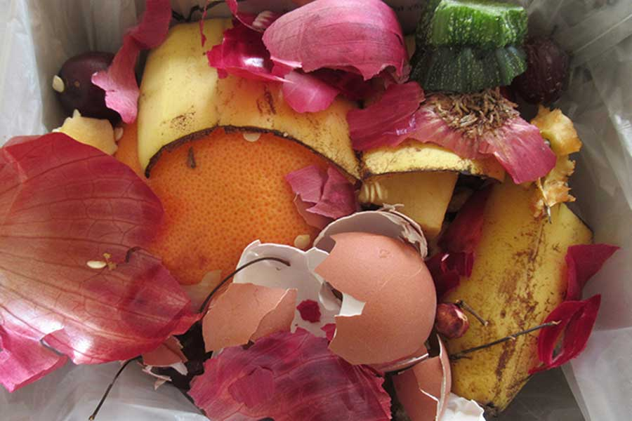 Edible England: What a (Lot Of) Waste days 1 to 10